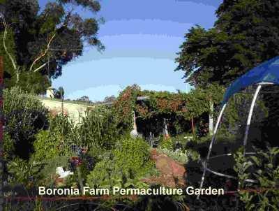 GardeningWest Western Australian Gardening